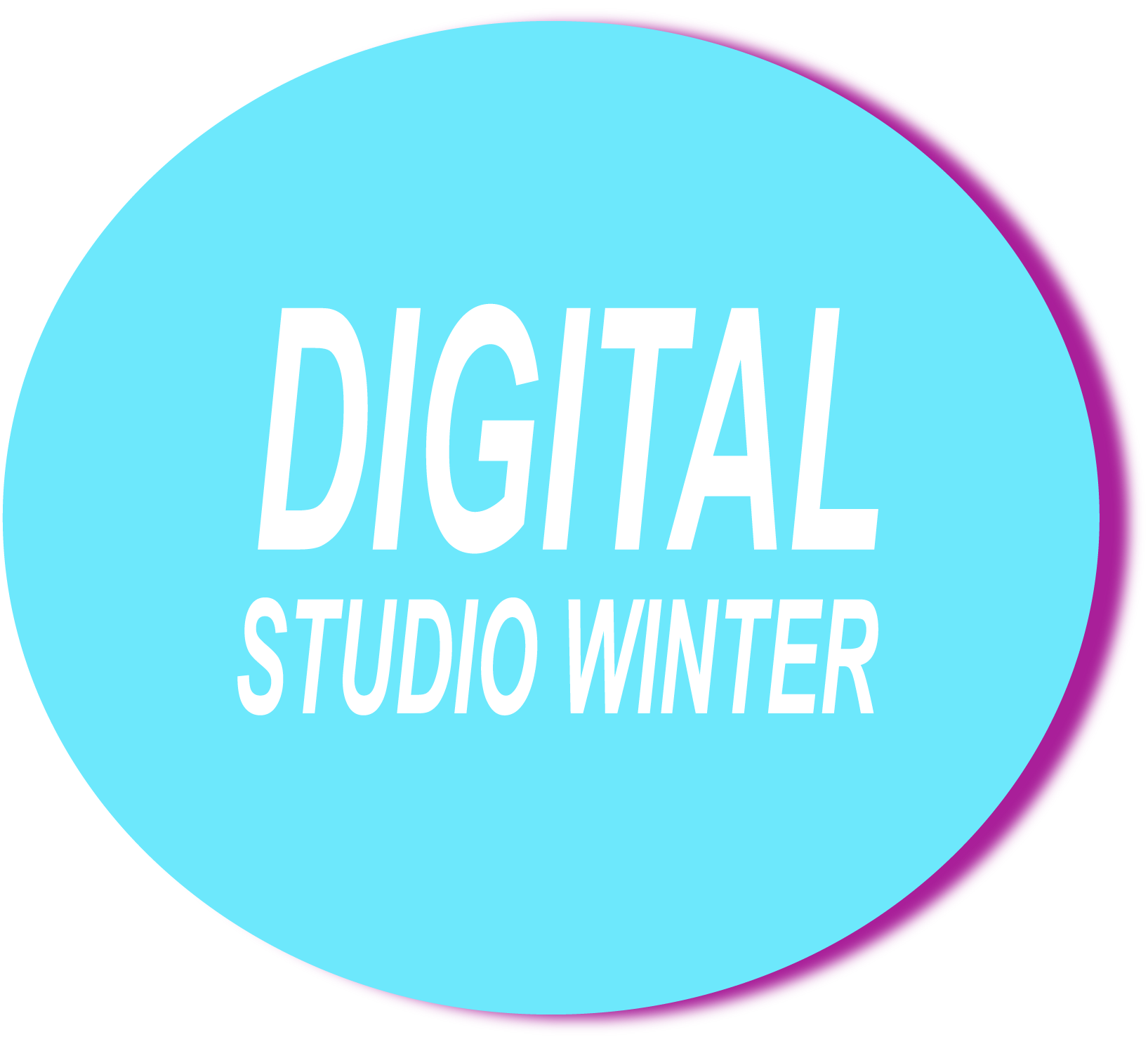 logo_ds_winter_v5